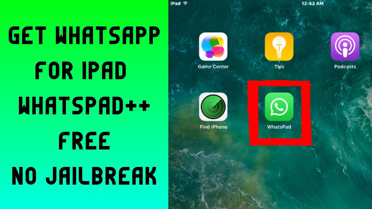 WhatsPad++ for iPad download